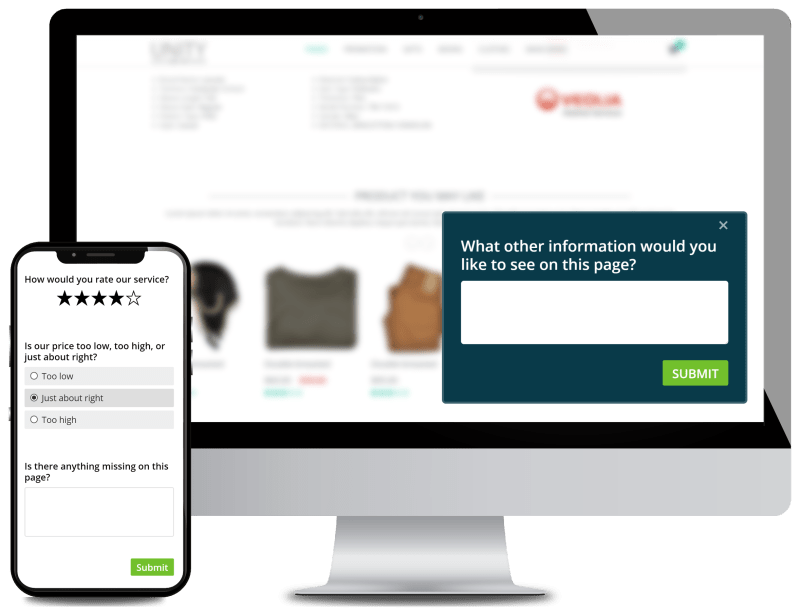 Website Surveys for Product Design